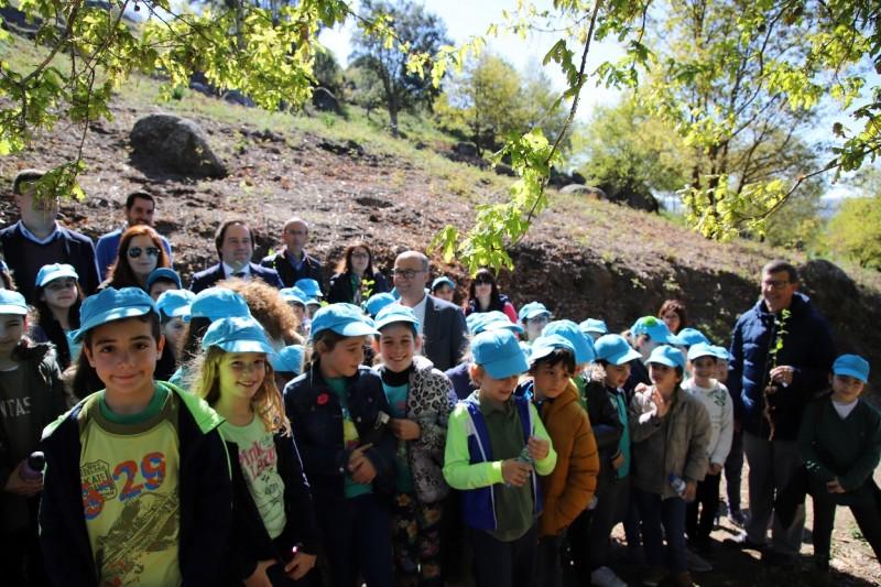 Vizela plantou árvores no concelho