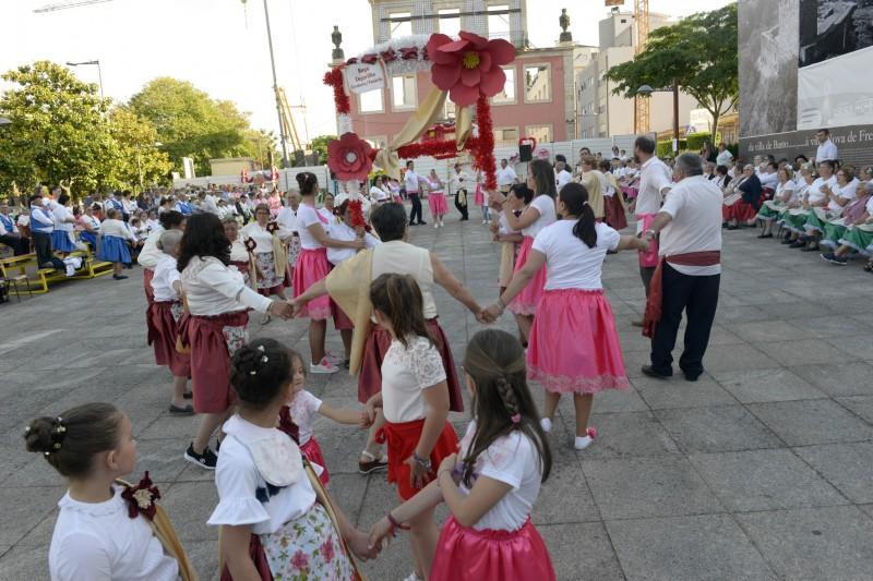 Camélias e características das freguesias foram os temas destas marchas populares