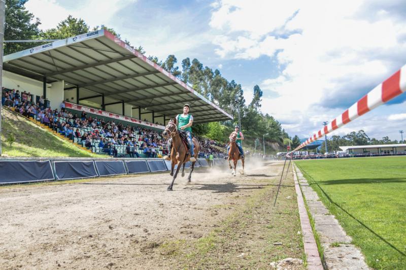 Vila Verde: Dos cavalos à cãominhada