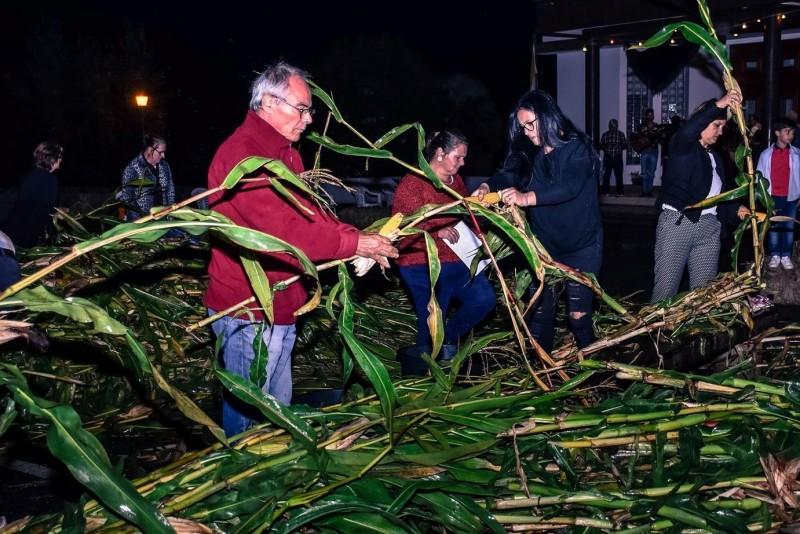 Vila Verde: Parada de Gatim prepara a 2ª edição da desfolhada minhota
