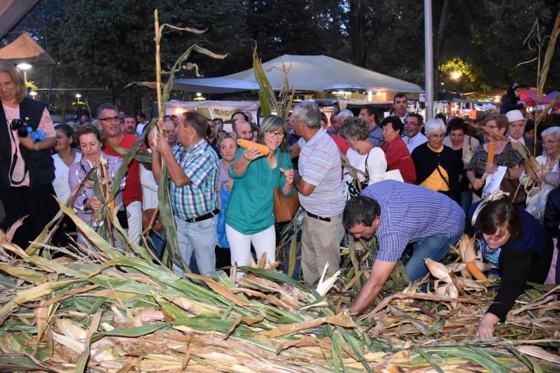 Famalicão: Feira de S. Miguel revive tradições e promove produtos da terra