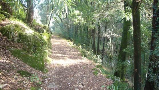 Trilho ´Memórias´ dos Três Cumes em Viana