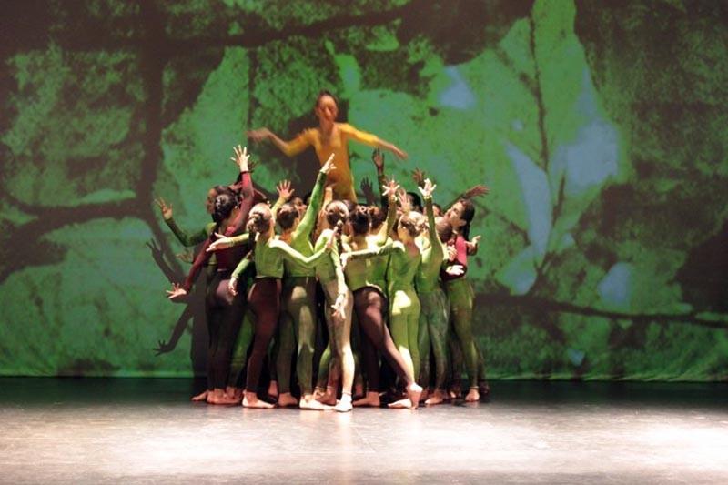 Câmara de Braga apoia deslocações a Gaia de alunos do ensino artístico da dança