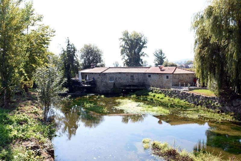 Agência Portuguesa do Ambiente investe 100 mil euros na reabilitação do rio Este