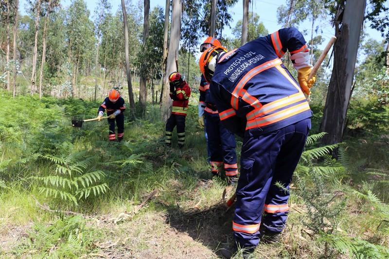 Braga tem quatro freguesias com risco elevado de incêndio florestal