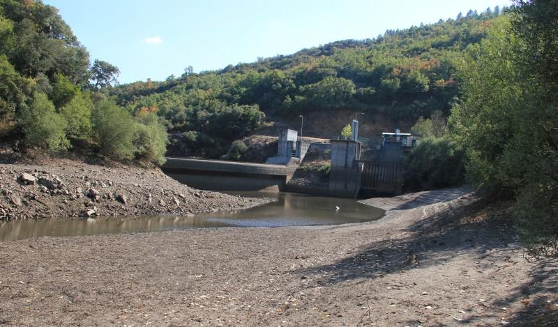 Pequenas barragens estão a fazer desaparecer uma espécie ameaçada
