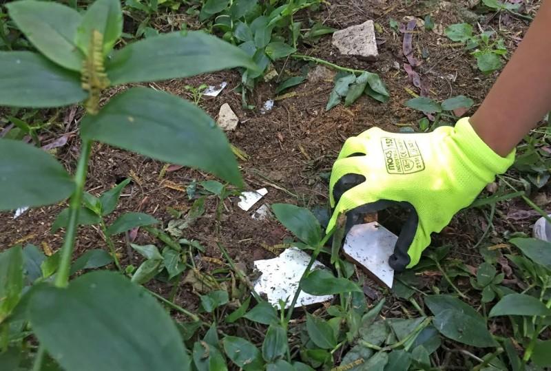 Amares registou aumento  de 9,3% na recolha selectiva