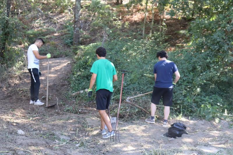 Amares promove Programa de Voluntariado Jovem para a Natureza e Florestas do IPDJ