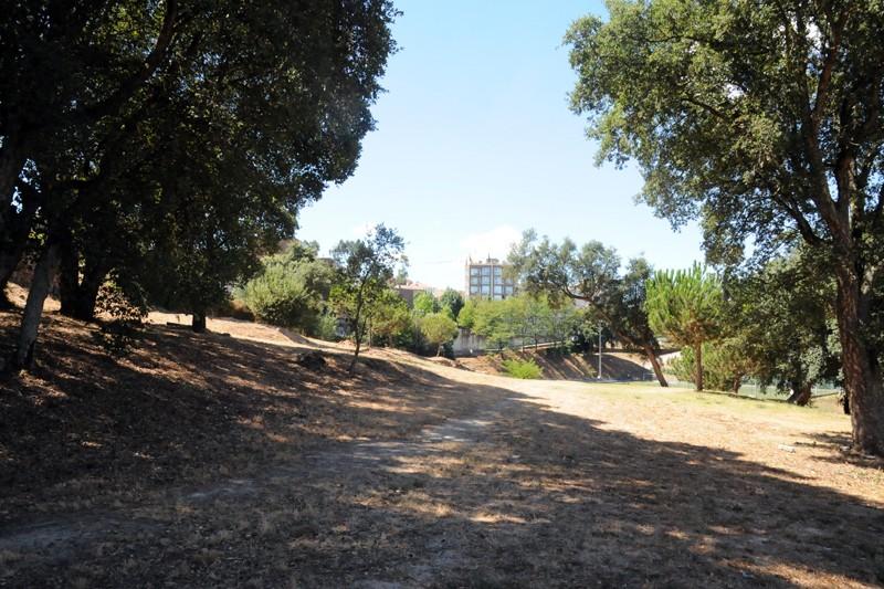 Câmara Municipal adjudica obras do Parque Urbano das Camélias