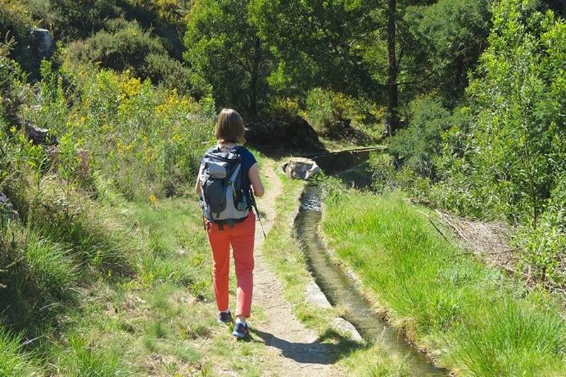 """Caminhada na Serra d'Arga quer """"mostrar ao vivo"""" impacto da exploração de lítio"""