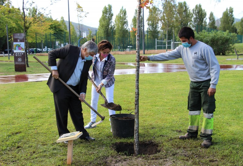 Autarcas de Cerveira e Tomiño plantaram a 'Árvore da Amizade'