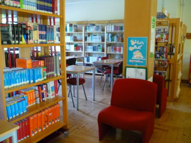 """Bibliotecas são """"centro  nevrálgico vital"""" nas escolas"""
