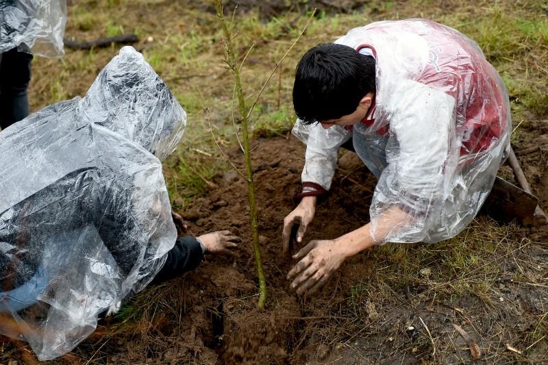 Instituições desafiadas para o 'Florestar Braga'