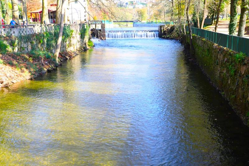 Rio Vizela está menos poluído