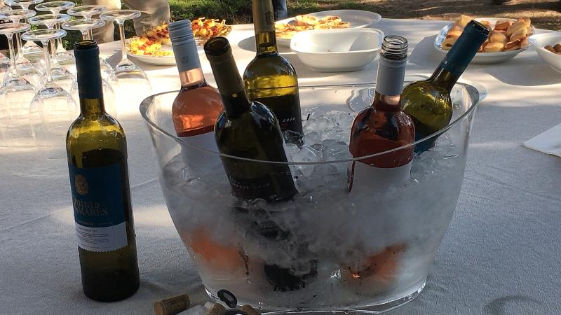 """""""Colheita de 2020? Os apreciadores de vinho verde vão ser surpreendidos"""""""