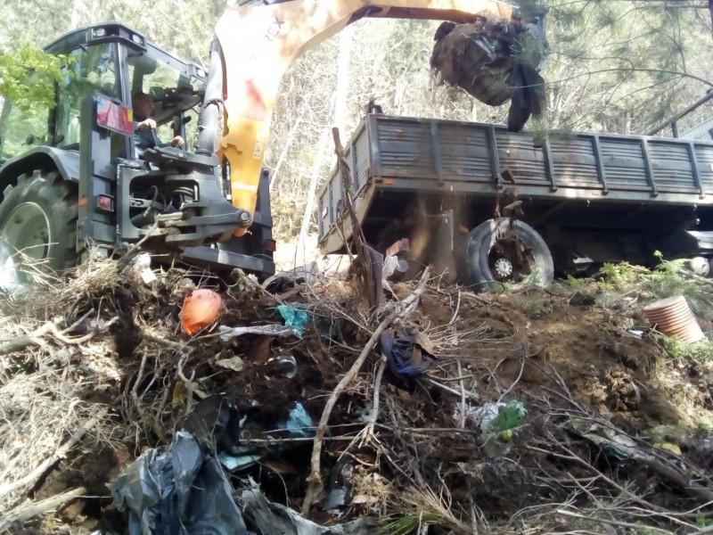 Recolhidas 32 toneladas em lixeiras clandestinas