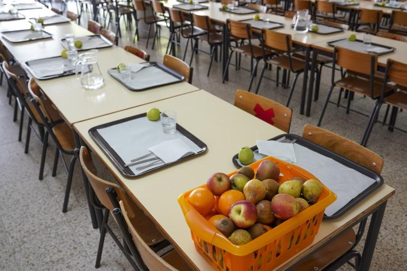 Programa de Fruta Escolar nas escolas de Guimarães do ensino básico e pré-escolar