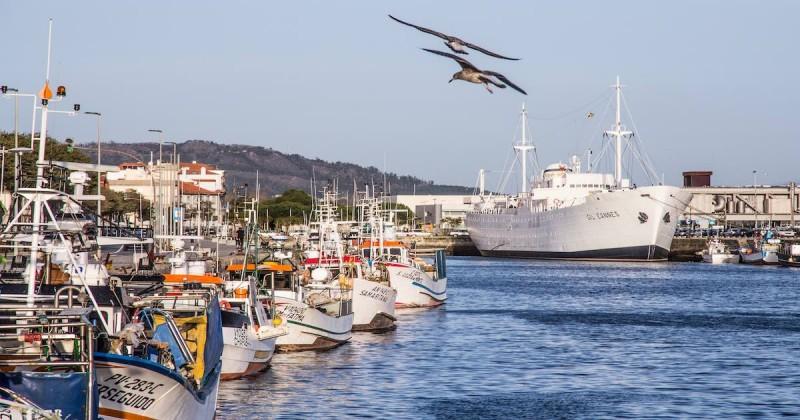 Viana do Castelo ganha 500 milhões e mil empregos com a Agenda do Mar