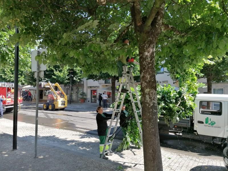 Limpeza Urbana em Terras de Bouro